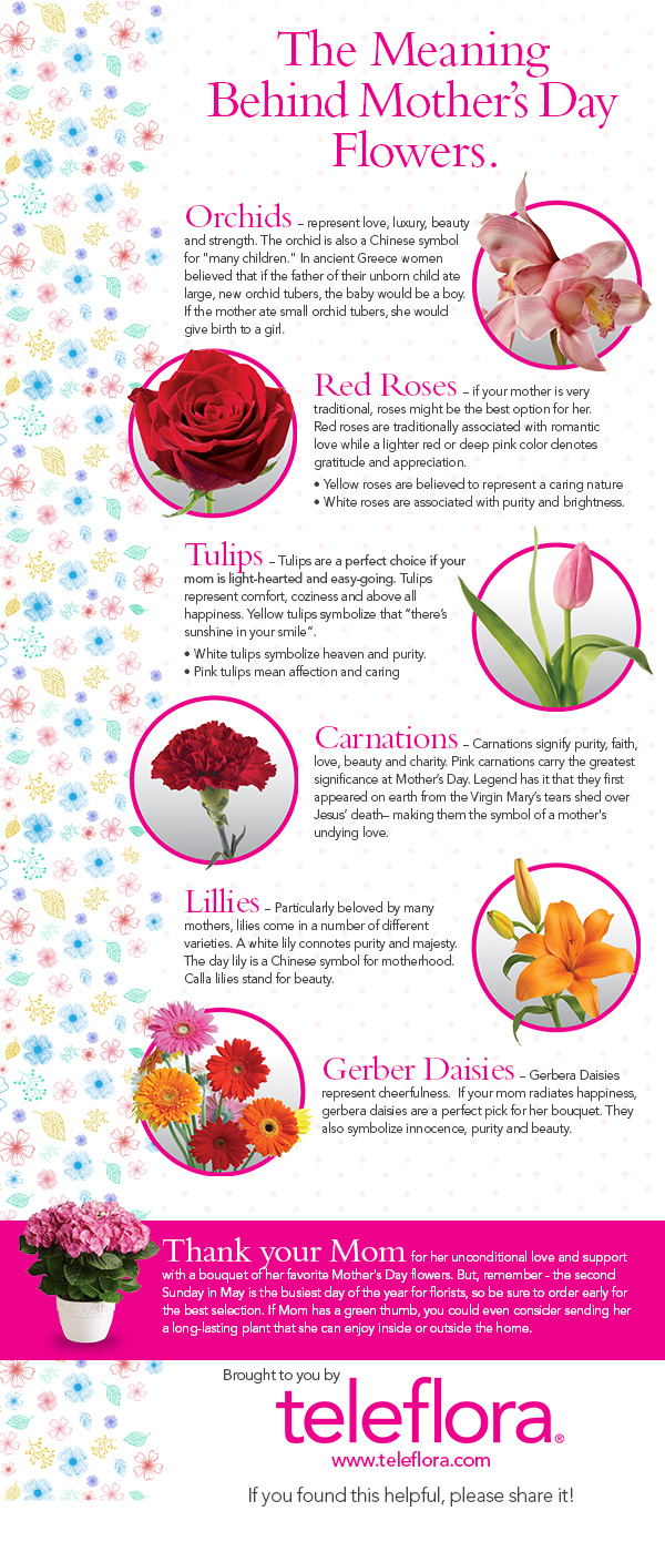 Infographic the meaning of mothers day flowers teleflora blog mothers day flower meanings teleflora mightylinksfo