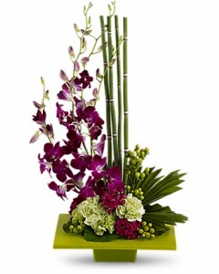 low_maintenance_flowers_for_busy_professionals_teleflora_orchids