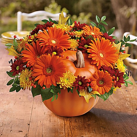 your_fall_flower_guide_to_mums_teleflora_country_pumpkin