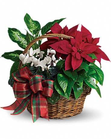 Shop Teleflora's Holiday Homecoming Basket