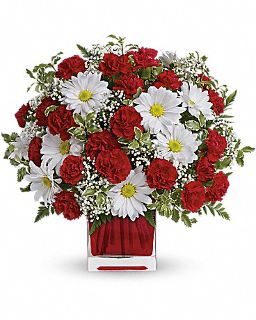 red carnations and white daisies in red vase
