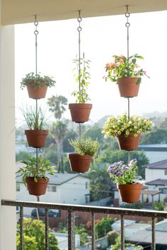 hanging plants on porch
