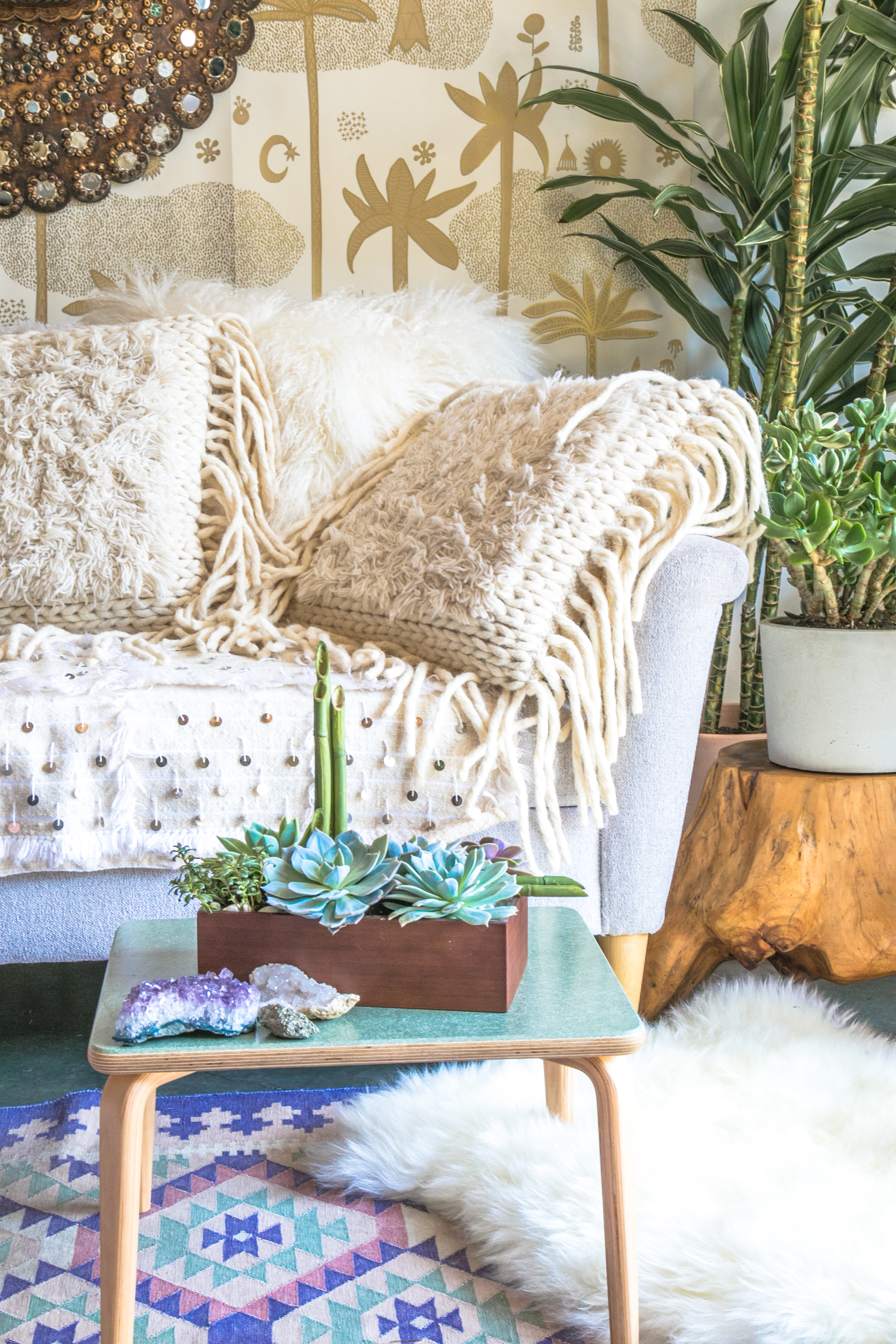 bamboo garden on table with tan couch