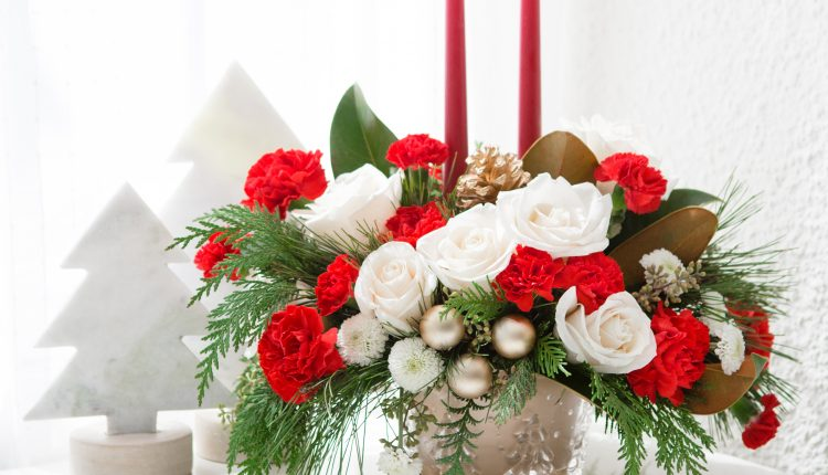 Teleflora_Winter-Pines_a_guide_to_holiday_flowers