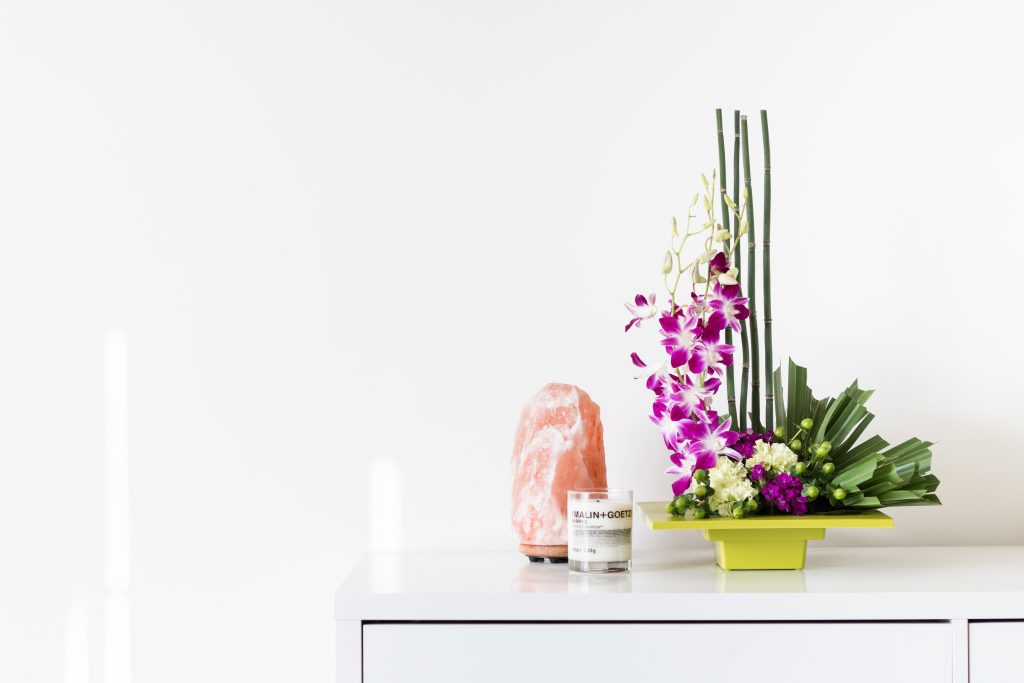How To Keep Your Plants Alive When You Leave For Vacation