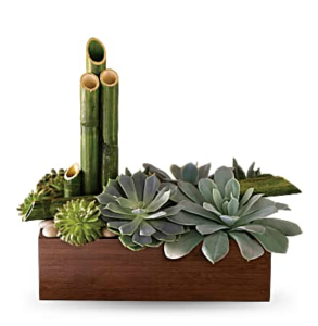Bamboo and succulents fill a bamboo container