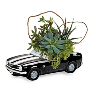 succluents fill a black chevy camaro keepsake vase